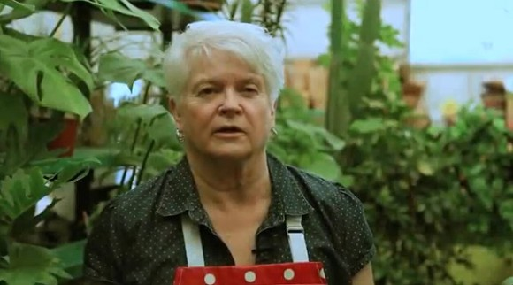 Barronelle Stutzman, Washington florist, being persecuted for her religious beliefs
